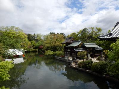 歴代天皇が花見などをして楽しんだ禁苑跡、現在は東寺真言宗の寺院