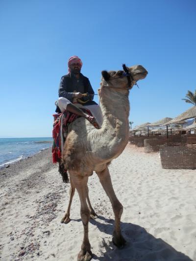 2018MARエジプト・シナイ半島のリゾート地タバからタクシーで800キロ走ってカイロ空港へ・ソフィテルタバハイツ滞在記