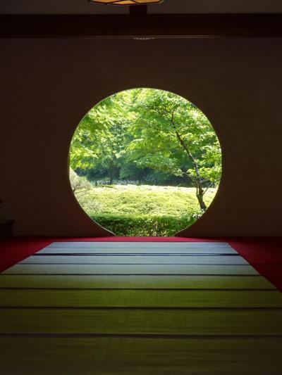 新緑の鎌倉1人散策