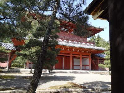船岡山公園(建勲神社)~今宮神社~大徳寺