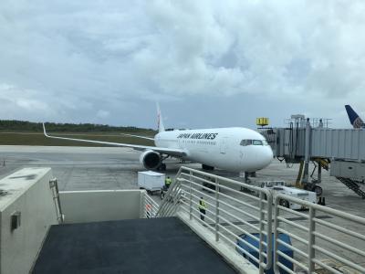 グアムに通うことになりました。復路JL942便搭乗記。