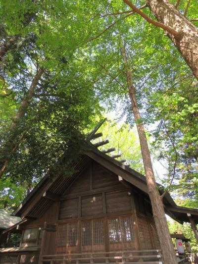 新緑の神明社を訪問する