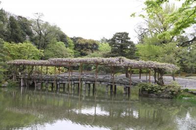ムラゴンの旅日記 春の京都御苑散策