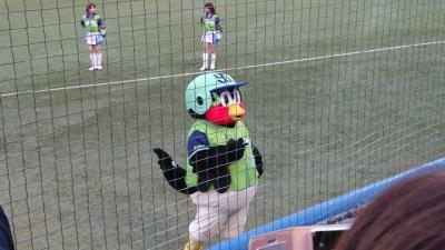 【 今シーズン初の東京決戦 東京ヤクルトスワローズVS読売ジャイアンツ】つば九郎に会いに行ってきた