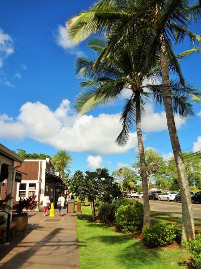 ハワイでリゾートウェディング(その5)《オアフ島一周ツアー(後編)》