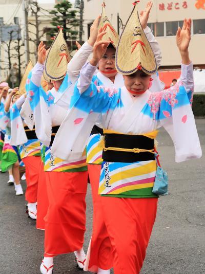 日立-9 日立さくらまつり 郷土芸能/踊り子パレード ☆阿波踊りの連も参加して