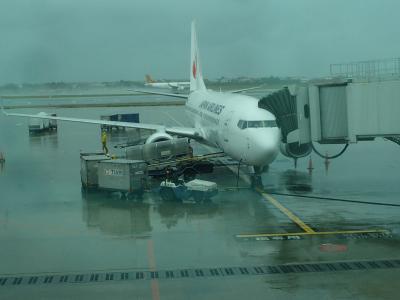 JL804便で、本降りの台湾から日本へ。737-800機材。