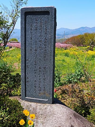 山梨-2 塩山桃源郷・桃の花咲いて ☆慈雲寺からの帰り道で