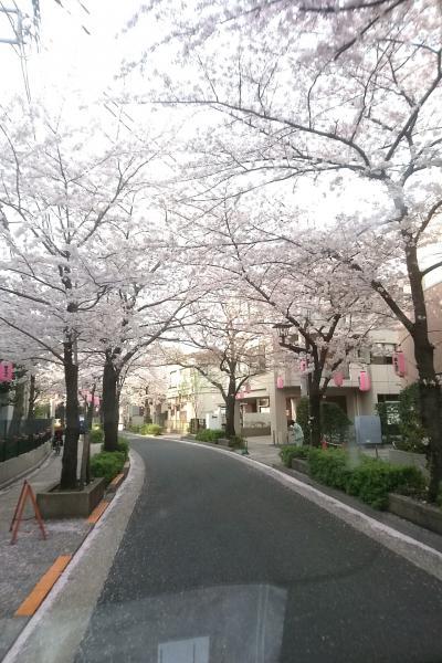 福岡から東京まで! 自力での引っ越し 車で。