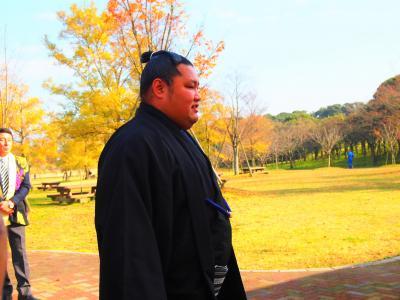 「メタセの杜」築上町 出身の大相撲力士 松鳳山(二所ノ関部屋)努力家でいいお相撲さんでした。
