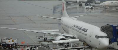 Boeing B737-800 に乗りました。NGO-HND JL200 早朝7:50発。