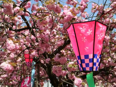 栃木県 下野市