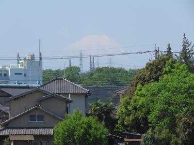 4月28日にふじみ野市で見られた富士山
