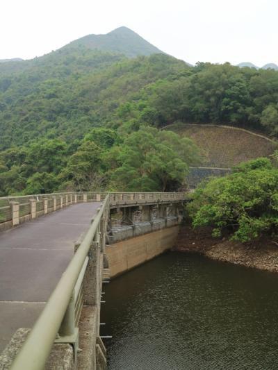 香港 鶴藪水塘