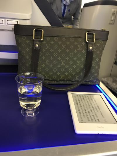 テンション上がる!初めてのビジネスクラス特典旅行とディズニークルーズ part.1