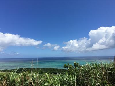四十路女のひとり旅 in 小浜島