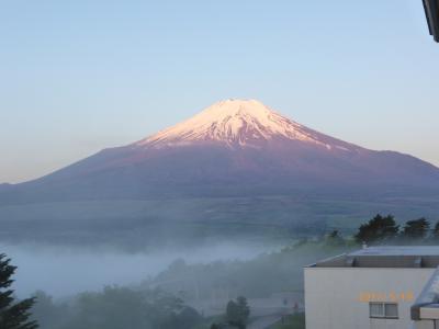 富士山 朝4時半に楽しむ/ 芝桜と共に