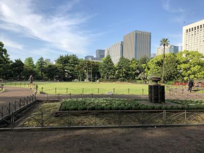 新緑の日比谷公園から東京駅