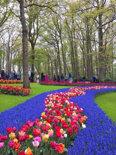 2018年のGWは気ままなヨーロッパ一人旅♪ Vol. 2 - この時期にオランダを訪れるからこそ行きたかったキューケンホフ公園でチューリップを堪能!