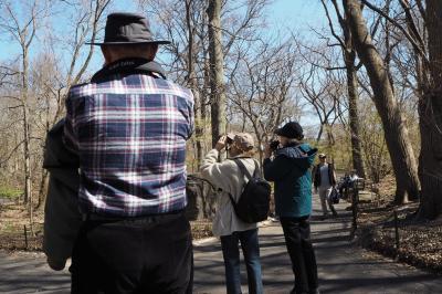ちょい住み イン NY・アッパーウエストサイド83rd St.   探鳥と音楽の旅②