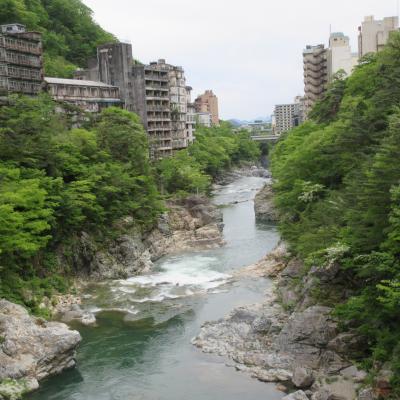 鬼怒川温泉の湯ったり旅