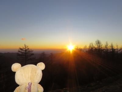 東京最高峰でクリスマスから帰るクマ
