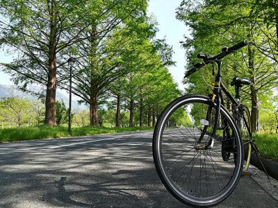 【2018】クロスバイク利用◆初ビワイチしてきた【自転車】(1/2)