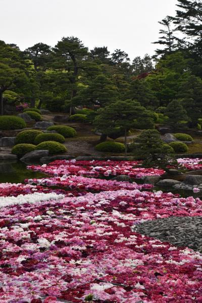 春の山陰旅は花と名園巡り(1日目)