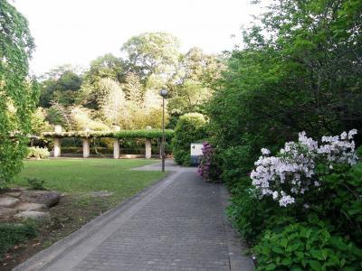 毎年恒例の加須市の玉敷神社の大藤を愛でに・・・2ー玉敷公園(旧河野邸跡)
