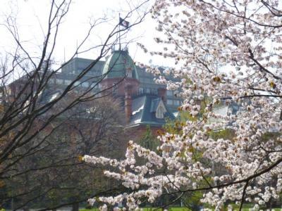 2018 GW 桜を求めて札幌周辺観光旅行