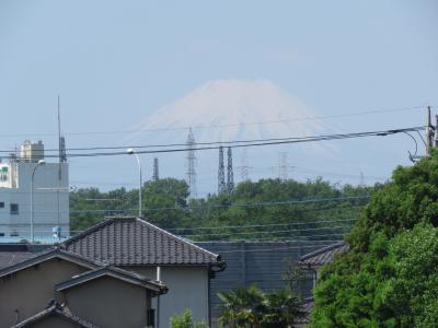 5月4日に見られた富士山