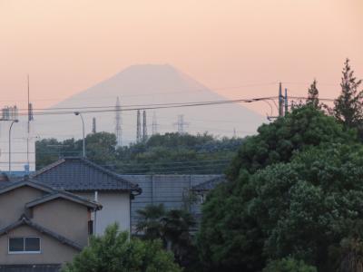 久しぶりにふじみ野市より影富士が見られました