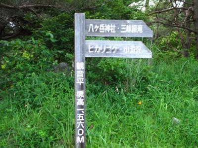 編笠山~権現山へ