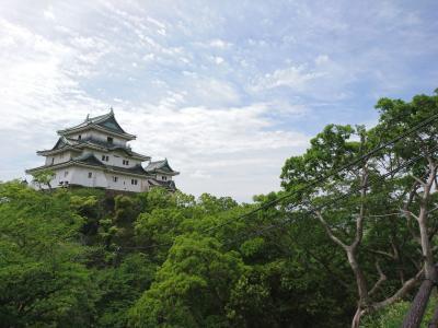 そうだ、和歌山へ行こう♪春の関西1デイパス♪