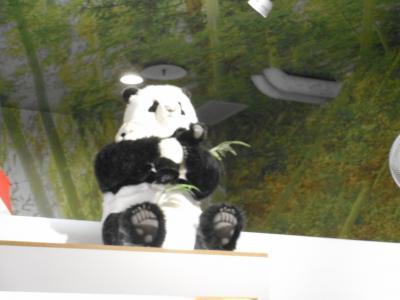 LCCで往復 台北の自然と風景と(2)