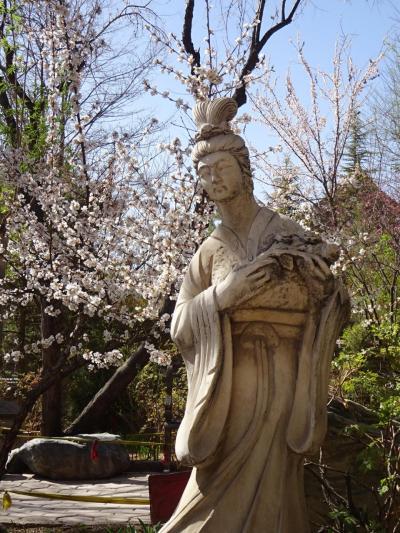 2018年4月 西安インアウトでどこに行きましょう 摩訶不思議姉妹の中国西北部の旅2日目(西寧到着!西寧観光)