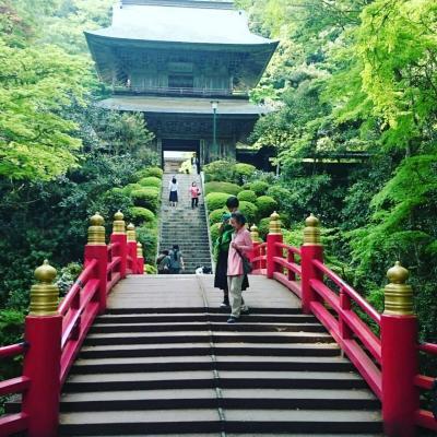 日帰り栃木の新緑周遊