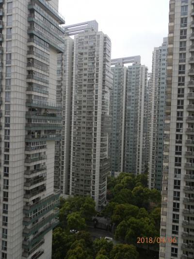 上海ど真ん中ツアーパート2