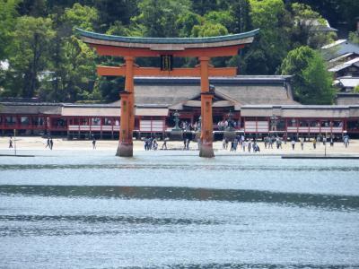 ダイヤモンドプリンセスで西日本巡り その7 4日目 宮島を目指す