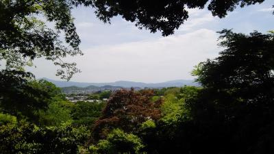 近隣シリーズ⑥ GW 嵐電に乗って久しぶりの嵐山散策