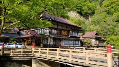 東山温泉・向瀧 温泉&新緑 満喫の旅