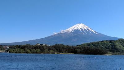 あおぞらと富士と河口湖