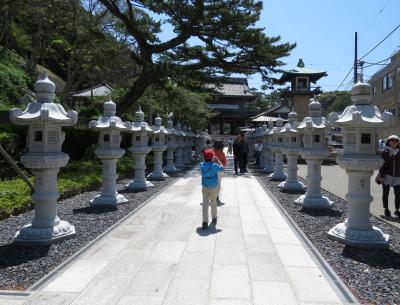 勝浦鴨川散策・・勝浦の朝市と鯛の浦、誕生寺を訪ねます。