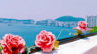 初めての釜山ひとり旅③ 3日目&最終日 ヒンヨウル文化村→五六島→国際市場