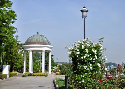ヴェルニー公園でバラ鑑賞