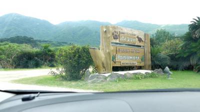 ビーチリゾート探訪は、もう卒業!これからは野鳥観察に路線変更。石垣島、西表島に飛んで、リュウキュウアカショウビン、カンムリワシに出会うぞ!の巻2:いざ!激闘!西表島 ~ 1日目編。