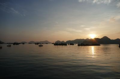 【カットバ島 Katt Ba Island】海水が汚くて泳げそうもないので、毎日バイクツーリング