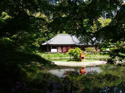 岩船寺と浄瑠璃寺の阿弥陀さんにお参り