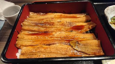 常滑で食べた海鮮。美味しいお店