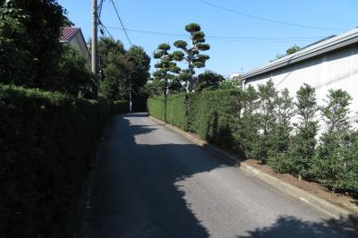 柏尾道を歩く2017-前篇